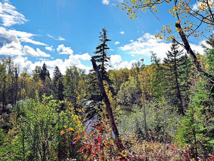 SLS Supports Historic Forest Legacy Easement