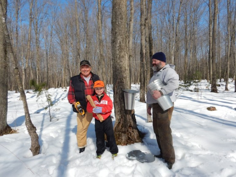 Turn Your Maple Trees to Syrup Production